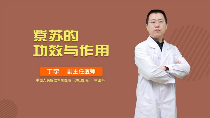 紫苏的北京快三下期和值预测功效与作用