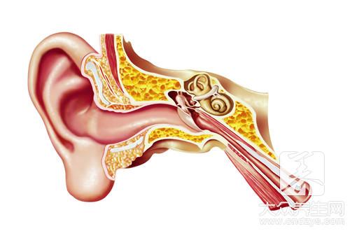 打耳洞几天可以换耳钉